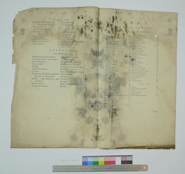 Blaeu Index mold Before Treatment