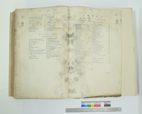 Blaeu Index mold After Treatment